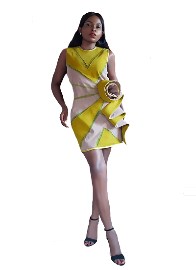 Irina Dress - Mustard  on maison aria