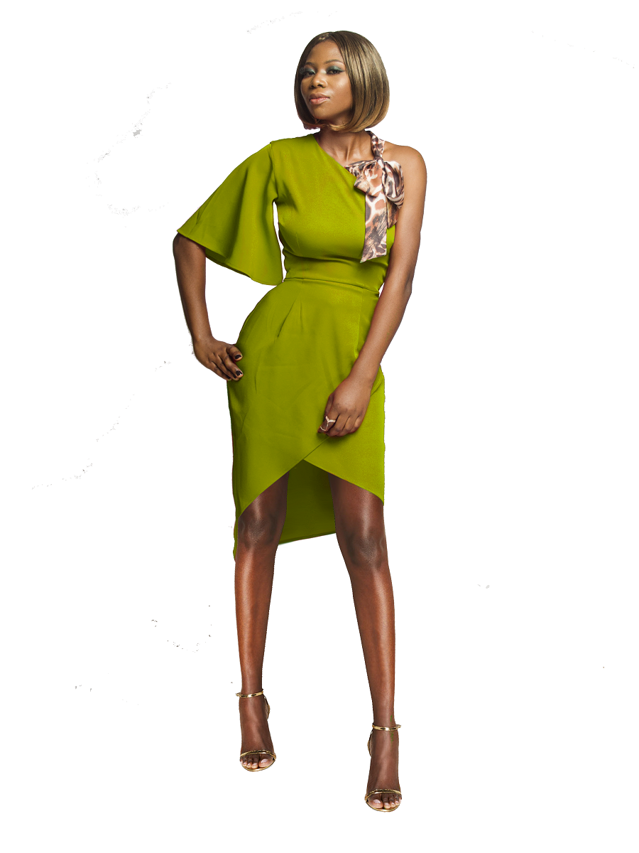 Pickle Petal Party Dress - Holiday Capsule